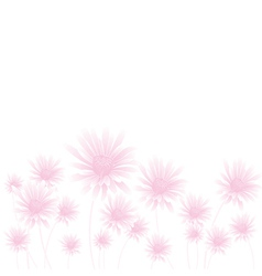 Chamomile pink bottom vector