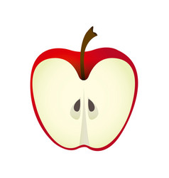Colorful realistic slice red apple fruit food vector