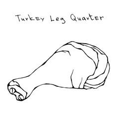 raw turkey leg quarter realistic vector image