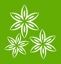 Star anise icon green vector