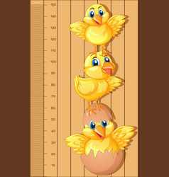 Growth chart ruler with little chicks vector