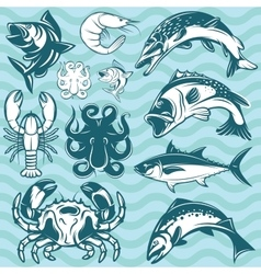Set of freshwater and marine fish and shellfish vector
