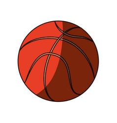 Isolated basket ball vector