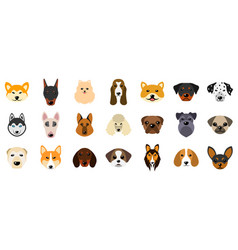 Set heads of dogs collection different breeds of vector