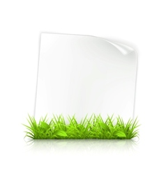 Grass and paper vector image