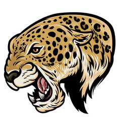 angry aggressive leopard vector image vector image