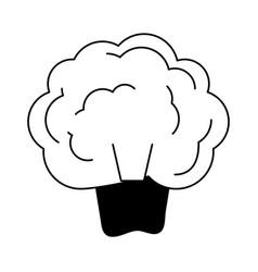 Broccoli vegetable icon image vector