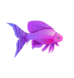Fish purple vector