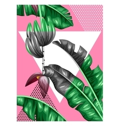 Poster with banana leaves decorative image of vector