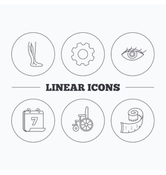 Vein varicose wheelchair and weight loss icons vector