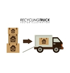 Recycling transport vector