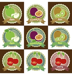 Set of fresh fruit badge sticker tag vector