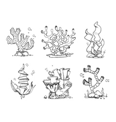 Vintage corals and seaweeds in hand drawn doodle vector image