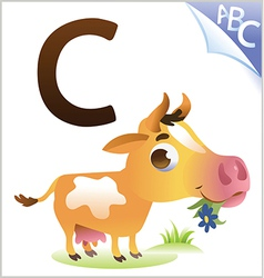Animal alphabet for the kids C for the Cow vector image