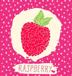 Raspberry hand drawn sketched fruit with leaf on vector