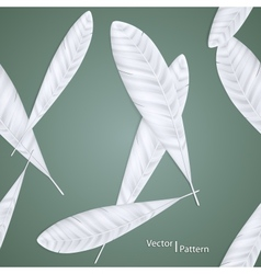 Background of feathers vector