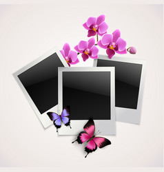 Butterflies photo frames vector