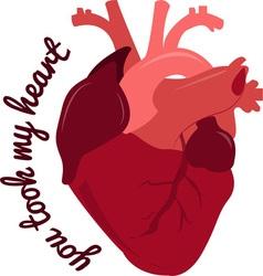 Took my heart vector