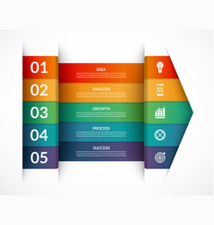 Infographic options banner template vector