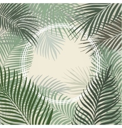 Hand drawn light green frame of palm leaves vector