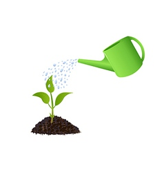 Green Young plant with watering can vector image vector image
