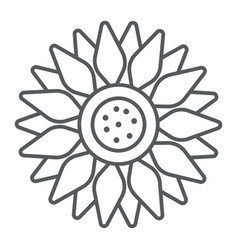 Sun flower thin line icon farming and agriculture vector