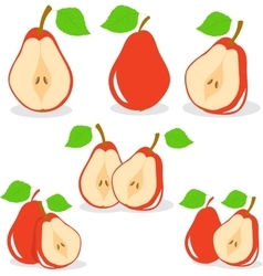 Pear  red pears vector