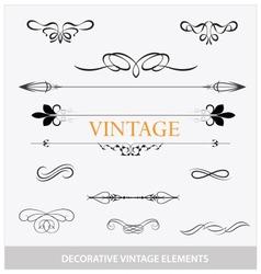 calligraphic vintage elemets and symbols set vector image