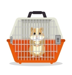 Hamster pet shop icon vector
