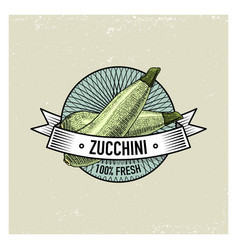 Zucchini vintage set of labels emblems or logo vector