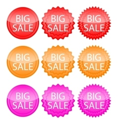Banner big discounts vector