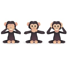 Three wise monkey vector