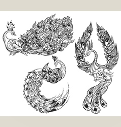 Drawing of three mythical swans vector image vector image