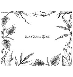 Hand drawn frame of sweet potato and bamboo shoot vector