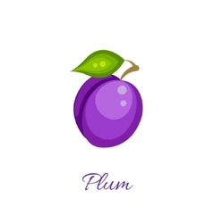 Purple plum icon vector image