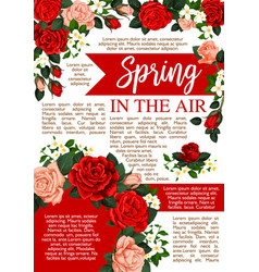 Spring time poster of floral roses bunch vector