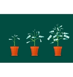 Stage growth of a tree money vector