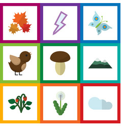 Flat icon bio set of lightning floral peak and vector
