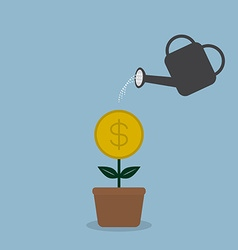 Watering money coint plant vector