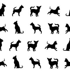 Chihuahua small dog seamless pattern vector