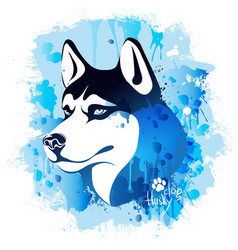 Watercolor image of the head of a dog of the husky vector