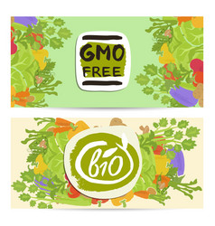 gmo free horizontal flyers set vector image