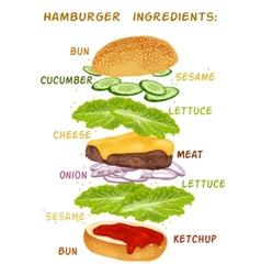 Hamburger ingredients set vector