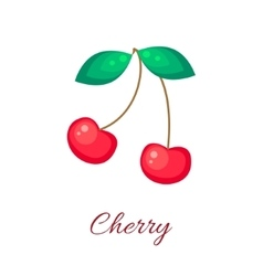 Red cherry icon vector