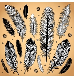 Fashion ethnic feather vector