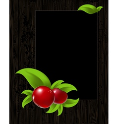 Frame with leaves and berry vector