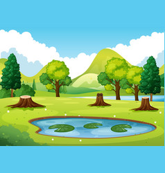 forest scene with little pond vector image vector image