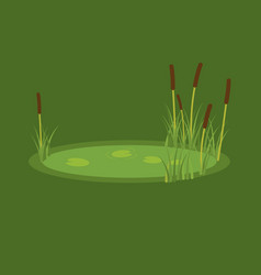 the marsh reeds and water vector image