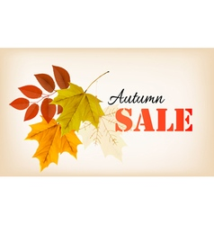 Autumn sales banner vector image vector image