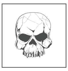Hand drawn skull the symbol day of the dead vector